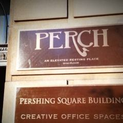 Perch User Photo