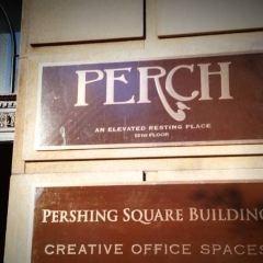 Perch用戶圖片