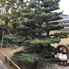 WAK Japan User Photo