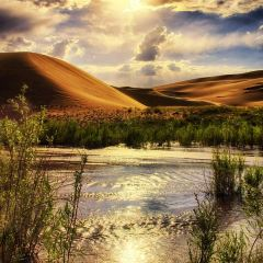 포대산 풍경구 여행 사진