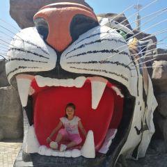 동북 호림원 여행 사진