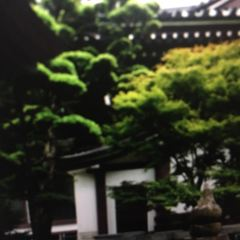Tochoji Temple User Photo