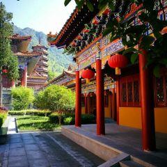 禪緣寺用戶圖片
