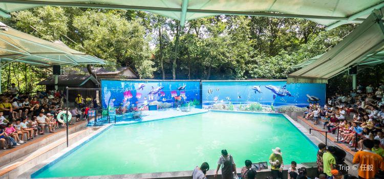 Hangzhou Zoo3