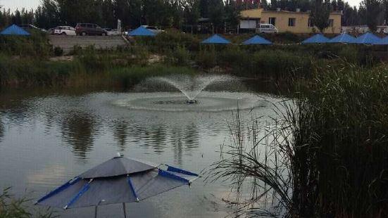 南湖濕地公園自助燒烤區