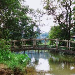 Mingshi Scenic Area User Photo