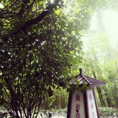 湯山溫泉用戶圖片