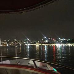 CityCat Ferry User Photo
