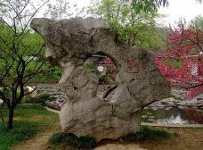 梅园公园-鹰潭-一个大橙子