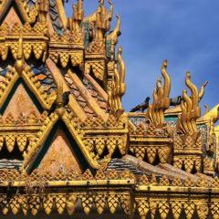 金邊皇宮用戶圖片