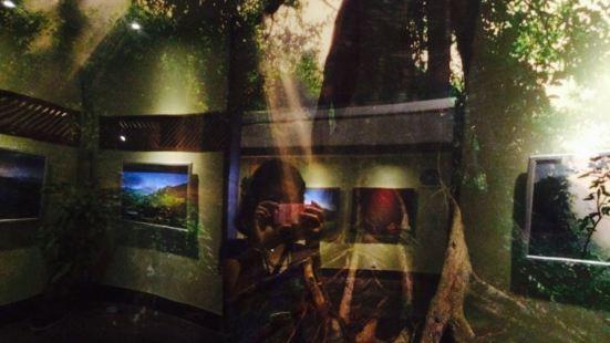하이난 우림 전시관