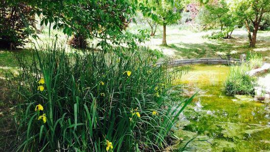 Giardino degli Iris