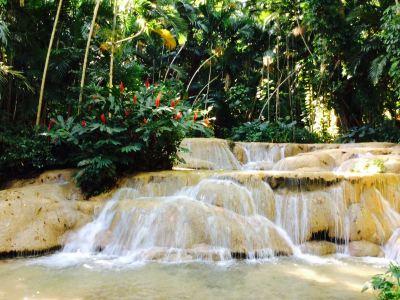The Enchanted Gardens, Bird Aviary, and Waterfall