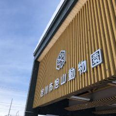 Asahiyama Zoo User Photo
