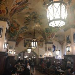 皇家啤酒屋用戶圖片