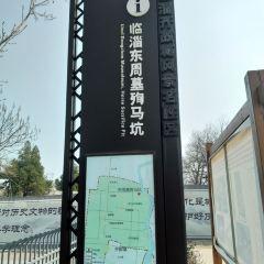 China Linzi Dongzhou Horse Burials Museum User Photo