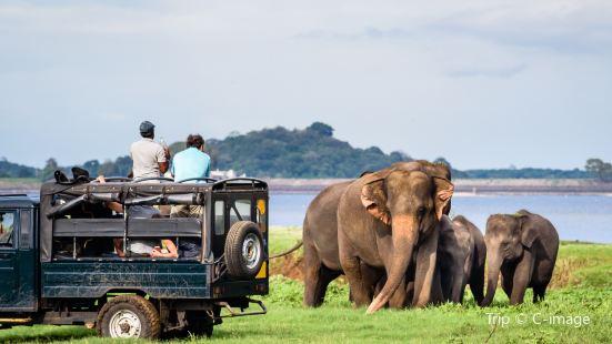 米內日亞國家公園