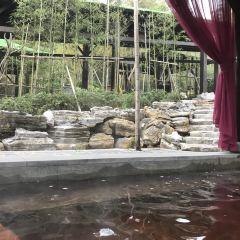 富陶溫泉用戶圖片