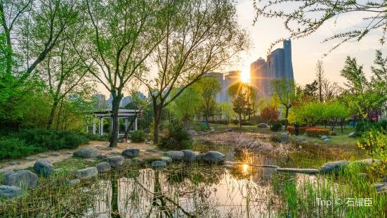 鄭東新區濕地公園