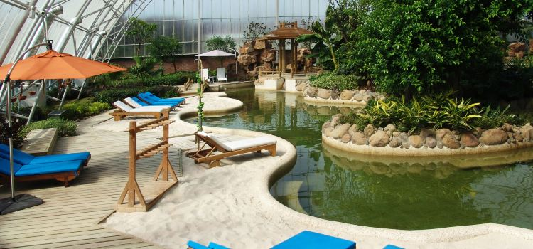 Pujiangyuan Hot Spring Forest Resort