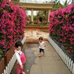 Binhai Park User Photo