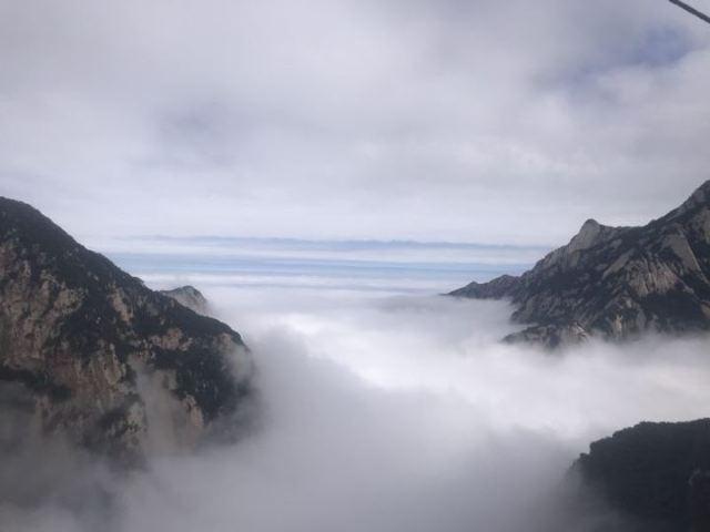 【今日實景】雨後華山雲海美景來襲!