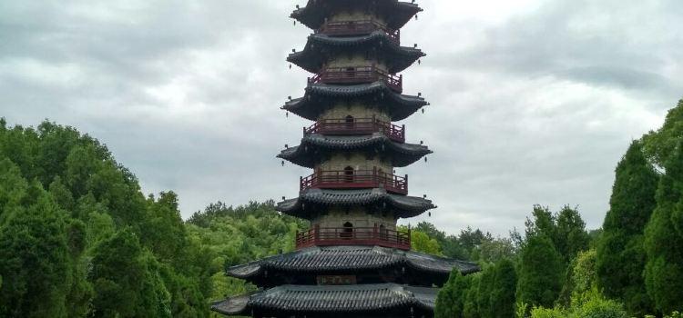 延慶寺塔1