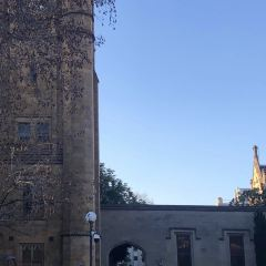 The University of Melbourne User Photo