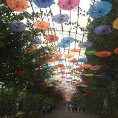 The Puran Eco Park User Photo