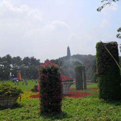 Longxiang Tower User Photo