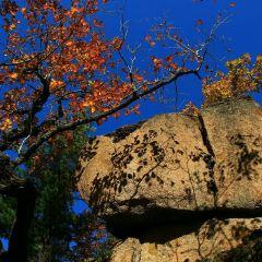 Mudanjiang Sandaoguan National Forest Park User Photo