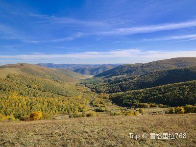 黃崗梁國家森林公園