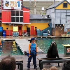 Gold Coast Sea World User Photo