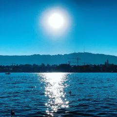 Lake Zurich User Photo