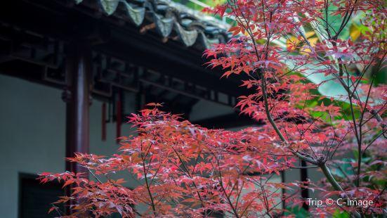 Zhan Garden