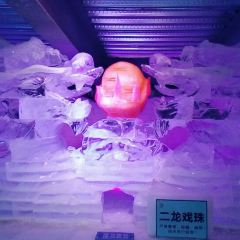 Three Bear Ice and Snow Kingdom Ice Sculpture Hall User Photo