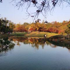 太子灣公園用戶圖片
