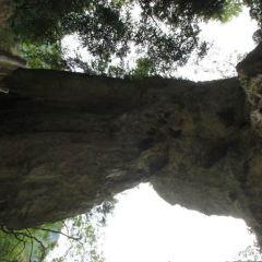 Red Fruit Tree Scenic Area User Photo