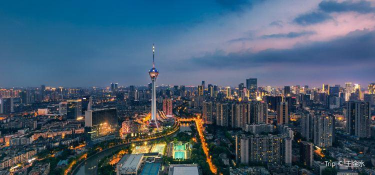 톈푸 판다 타워1