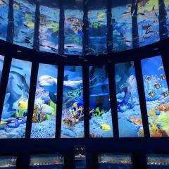 해창해양공원 여행 사진