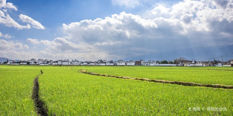 喜洲镇图片