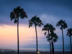 洛杉矶经典地标一日游
