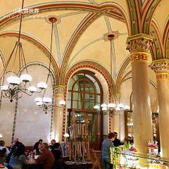 中央咖啡館用戶圖片