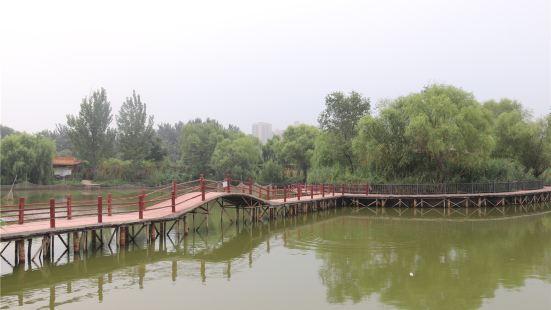 東昌湖濕地島休閒漁業公園
