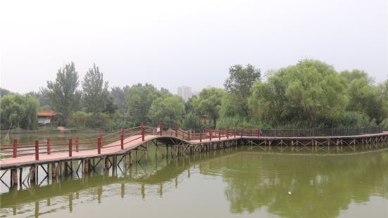 Dongchang Lake Wetland Island Leisure Fishery Park