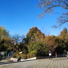 Bailong Culture Square User Photo