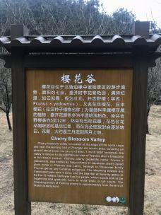 钟坡风景名胜区-怀化-当地向导伊妹儿