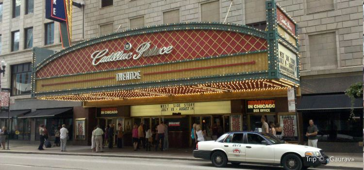 Cadillac Palace Theatre1