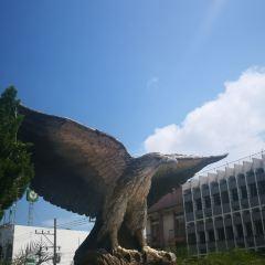 크래비 여행 사진
