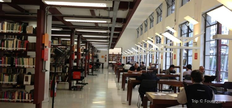 Mario de Andrade Library1